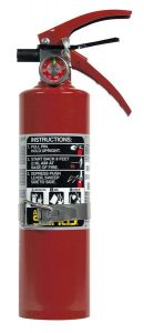SENTRY A02VB 2.5 lb. Fire Extinguisher