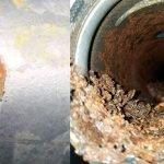 Pinhole Leak & Corrosion in Fire Sprinkler Pipe